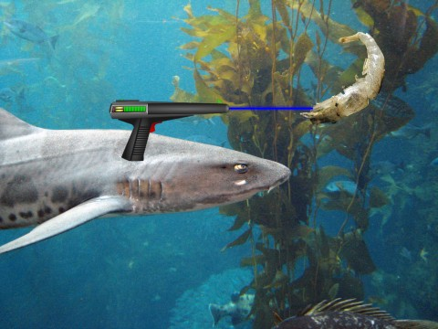 Sharks with Laser and Giant Shrimps
