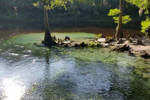 Photo: Madison Blue Springs State Park Credit: Jim Billings